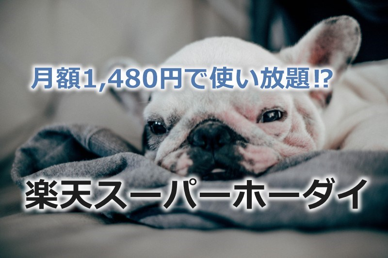 格安SIM最強?「楽天スーパーホーダイ」が1Mbps使い放題で月額1,480円!!